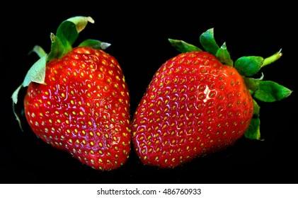Fresh strawberries on black background