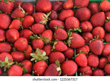 Fresh strawberries for sale at outdoor market place