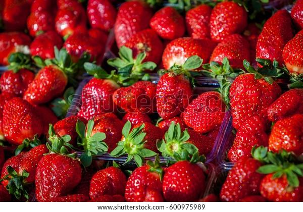 Fresh Strawberry Background. sweet strawberries