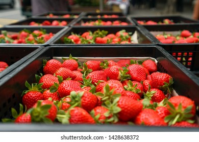 Fresh strawberry in basket, Image