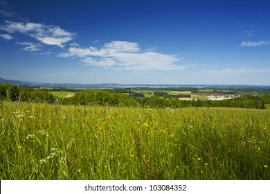 fresh summer meadow and beautiful view in bavaria