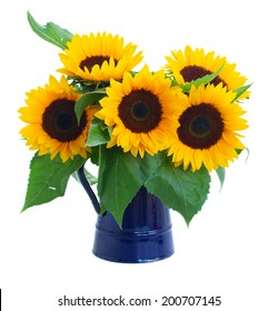 fresh sunflowers  flowers bouquet in blue pot isolated on white background