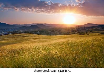 Fresh Sunrise