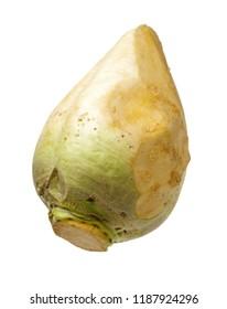 Fresh swede vegetable on white background