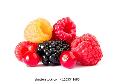 Fresh Sweet Berries Isolated on the White Background. Ripe Juicy Raspberry, Blackberry, Currants