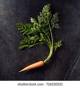 Fresh and Sweet Carrot on Black Slate Background