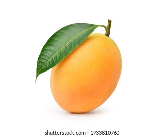 Fresh sweet marian plum with leaf isolated on white background. Clipping path.