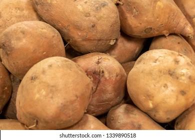 Fresh sweet potato on a market. Group of asterix potatoes