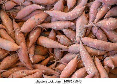 Fresh Sweet Potatoes in a Farmer's Market