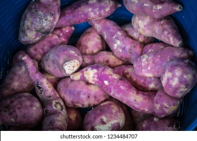 Fresh sweet potatoes are kept for sale in the market.