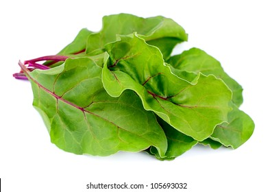 fresh swiss chard on a white background