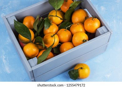 Fresh tangerines in box with leaves on blue concrete background.