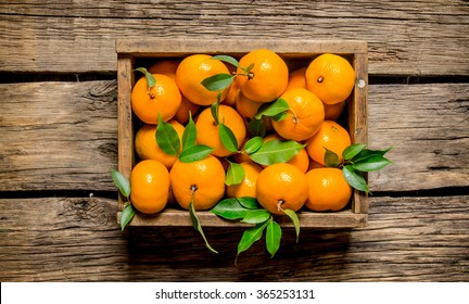 Fresh tangerines in an old box with leaves. On wooden background.  Top view