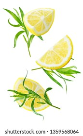 Fresh tarragon leaves on a white background. toning. selective focus