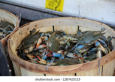 Fresh and tasty crabs for sale in a basket on a fresh food market