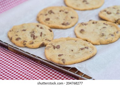 Fresh tasty home made chocolate chip cookies