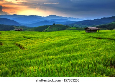 Fresh terrace rice field over the mountain range and beautiful sunset