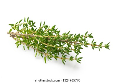 Fresh thyme sprigs isolated on white.