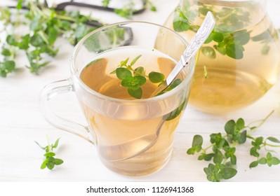 Fresh thyme tea in glass