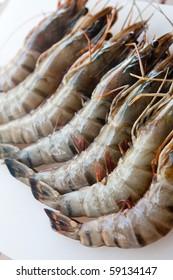 Fresh tiger prawn on white plate