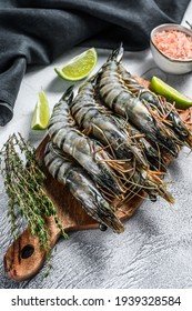 Fresh tiger shrimps, prawns with spices and herbs on a cutting board. Gray background. Top view