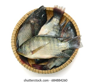 Fresh Tilapia fish in basket, isolated on white background