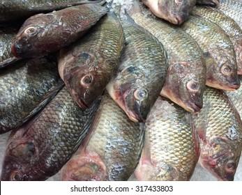 fresh tilapia fishes at the fish market, Thailand