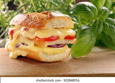 Fresh toast with melted cheese tomato and onion on wooden background