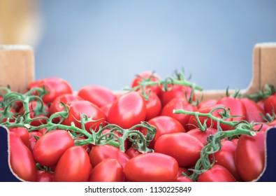Fresh tomato background