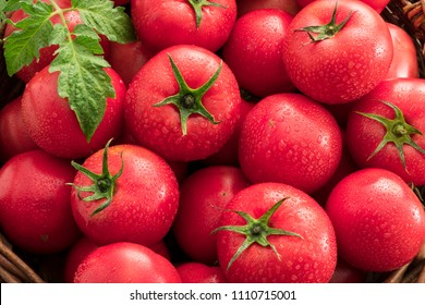 Fresh a lot of tomatoes