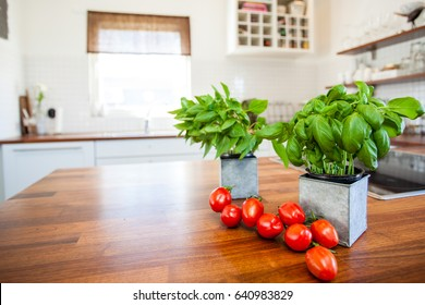 fresh tomatoes and basil on the kitchen counter top with kitchen interior blurred in the background