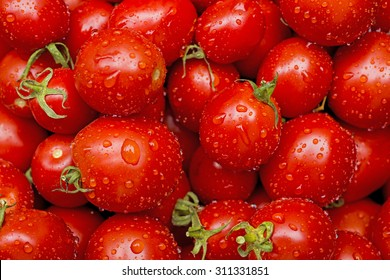 Fresh tomatoes in drops of dew as a background