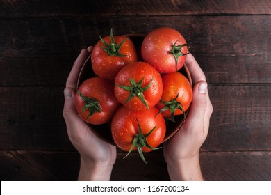 Fresh tomatoes in hands on a wooden background. Harvesting tomatoes. Top view