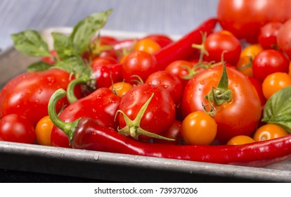 Fresh tomatoes, peppers, with basil on a sheet pan ready for roasting