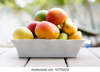 Fresh from the tree mangoes are piled together in a white dish.  Oahu, Hawaii.