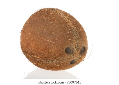 Fresh tropical coconut isolated on white background