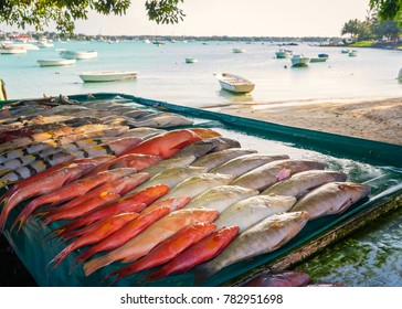 Fresh tropical fish in the market,with background the fishing port.Mauritius island.