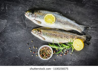 Fresh trout on dark table with salt pepper and rosemary. Tasty fish prepare for eating.