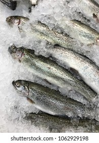 Fresh trouts at the counter of the fish market.
