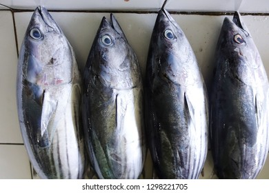 Fresh Tuna from the sea sell in the market