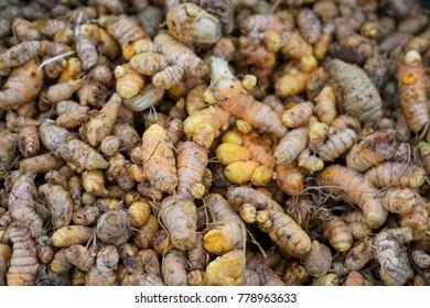 Fresh turmeric.Raw organic turmerics in a pile at the farmer's market.