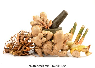 Fresh Turmeric rhizome, ginger and galangal on a white background.