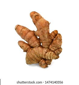 Fresh turmeric root isolated on white background