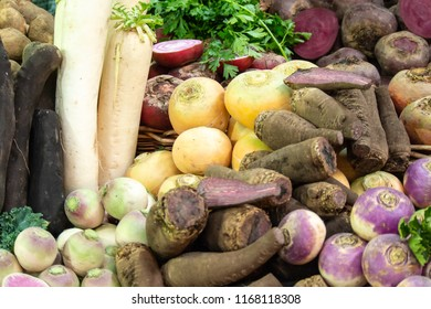 Fresh Turnips, Beets & Root Vegetable Produce on Sale in Borough Market, Southwark, London UK