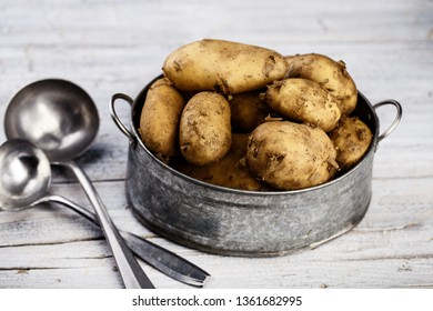 Fresh unpeeled early potatoes in Spring in tin pot