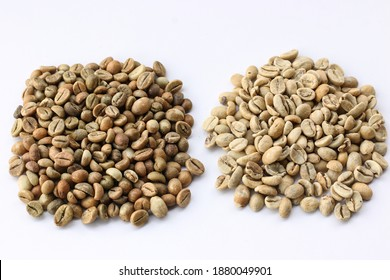 Fresh unroasted coffee beans,  The Robusta coffee beans on the left are small and spherical. The Arabica coffee beans on the right side look plump and bigger.
