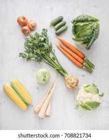 Fresh vegetable celery carrot onion parsnips cucumber kale cabbage kohlrabi and cauliflower on white concrete background.