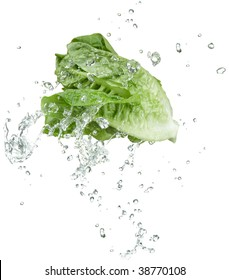fresh vegetable with water splash on white background