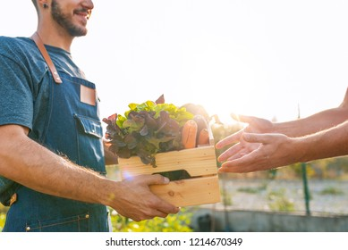 Fresh vegetables being sold at farmers marke. Farmer giving box of veg to customer. Local farmer talks with customer at farmers' market. Close up view of a farmer and customer