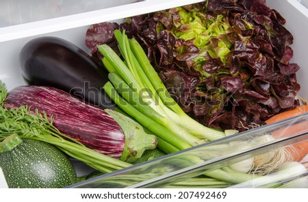 Fresh vegetables in the bottom of the refrigerator